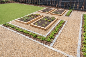 new raised veg beds