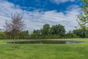 lake in landscaped area